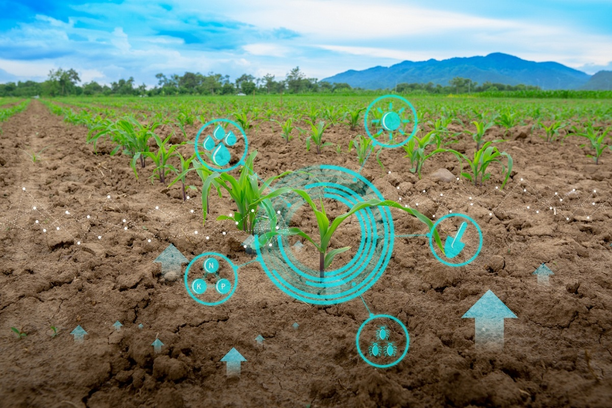 ICL Group Launches ICL Planet Startup Hub: foodTech and agriTech start-ups